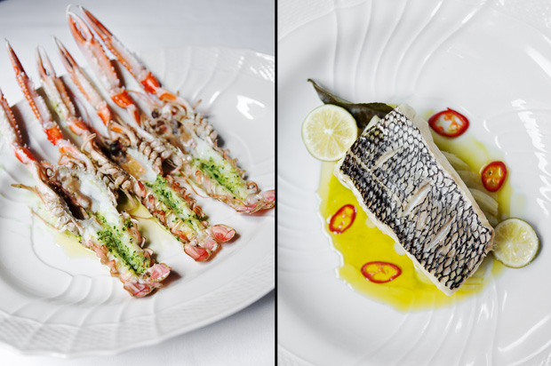 Carbone Scampi and Seabass